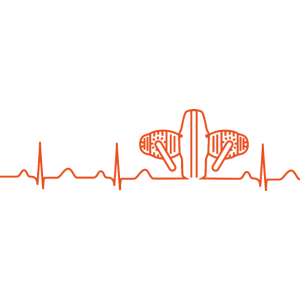 Heartbeat Boxermotor orange