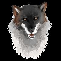 Wolf - illustriert