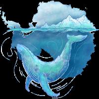 Southern Ocean Whale Sanctuary