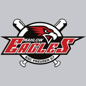 Main Logo Eagles
