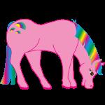 Regenbogen Pferd