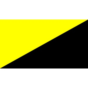 Anarcho capitalist flag big