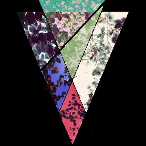 TRI_1 - Dreieck, Ornament, Vintage, Frühling, cool