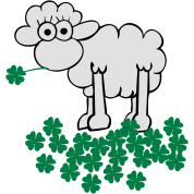 st. Patrick's sheep