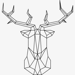 Deerlines002