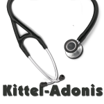 Kittel-Adonis