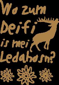 Oktoberfest & Wiesn Shirt: Wo zum Deifi is mei Ledahosn