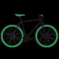 Singlespeed schwarz-grün
