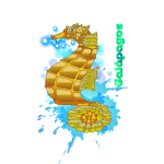 sea horse galapagos