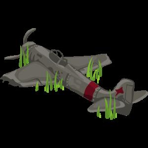 Flugzeug Wrack