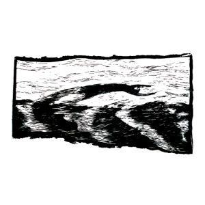 Wellenflug
