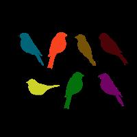 Schwalben Vögel