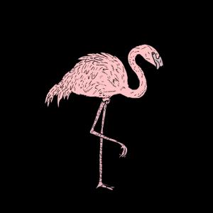 Flamingo - Comicstyle