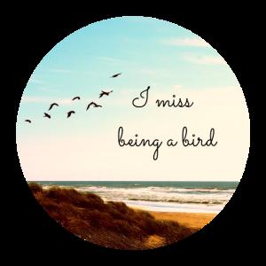 I miss being a bird (Kreis)