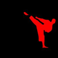 Kickboxer MMA 2 Kämpfer Schatten Style