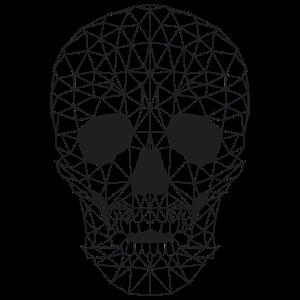 Poly - Skull