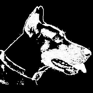 Dobermann Profil
