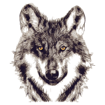 WOLF OR SHEPHERD