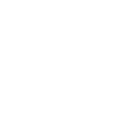 Physiker - Physiker Definition
