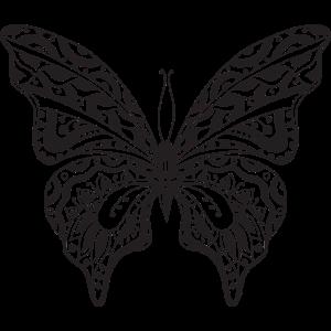 06 Schmetterling 3 png vectorstock 4902343