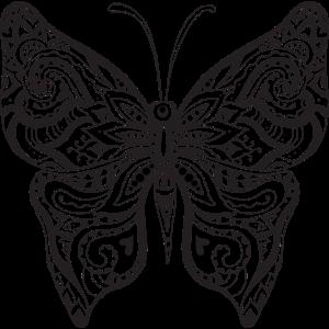 02 Schmetterling 1 png vectorstock 4902343