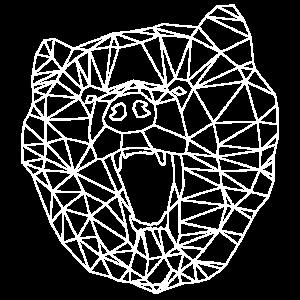Bear-White