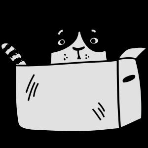 Katze in einer Schachtel