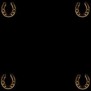 Hufeisen, Reiter, Pferd