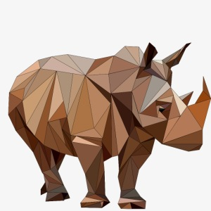 rhino Vcr Fva