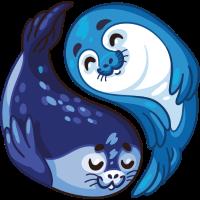 Seelöwen Paar