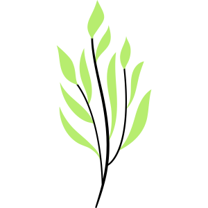 Graspflanze