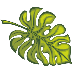 Philodendronblatt