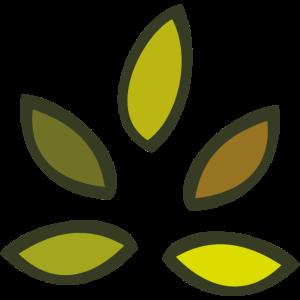 Kastanienbaum Blatt