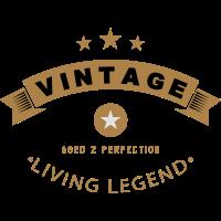 Vintage Shirt 1978 living