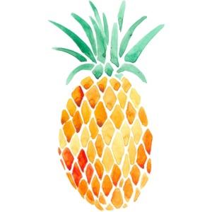 pinety logo print
