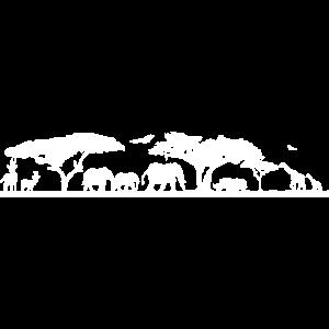 SAVANNE - Afrika