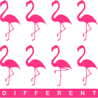 Flamingo_different