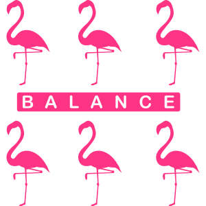Flamingo Balance-2