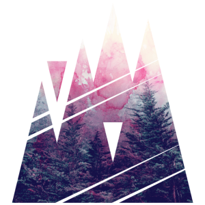 Shape of Woods