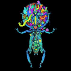 Räumliche Beetle Multicolor