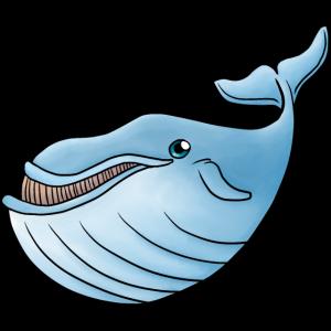 Kleiner Blauwal