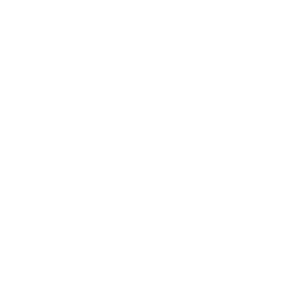Ingenieur - Ingenieur Definition