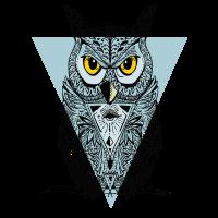 eule Dreieck illuminati swag Vogel Augen Nacht lol