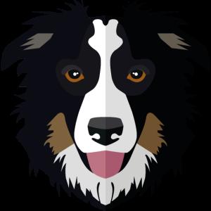 Tiere vectorstock 5433709 Hundegesicht 005 collie