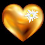 Goldenes Herz mit Edelweiss