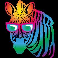 cool Zebra