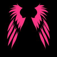 Flügel gehen