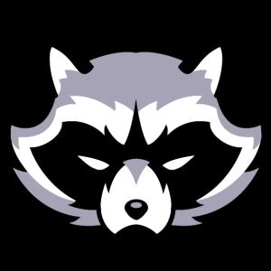 Waschbär Grauton / Raccoon