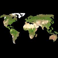 Polygon Weltkarte