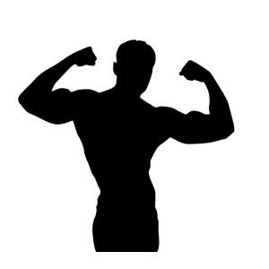 Musculation